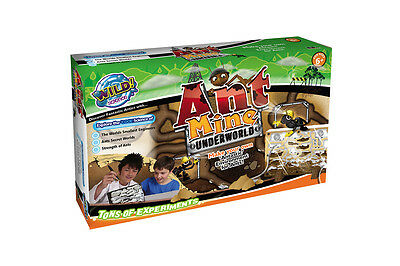 Wild! Science Ant Mine Large
