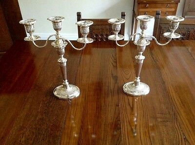 Tall Pair Antique English Sterling Silver Candelabra 1903