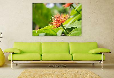 Stunning Poster Wall Art Decor Flower Orange Green Leaves 36x24 Inches