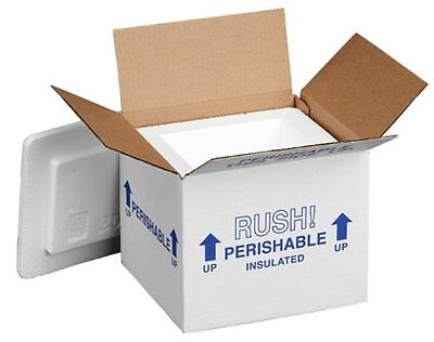 "Polar Tech 205C Thermo Chill Insulated Carton with Foam Shipper Small 6"" Leng..."