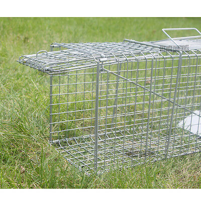 TRAP Humane Possum Feral Cat Rabbit Bird Animal Dog Hare Fox Cage Live Catch New
