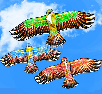 Fashion 1.1M Flying Eagle Kite Novelty Animal Kites Outdoor Sport Kid's Toy AU