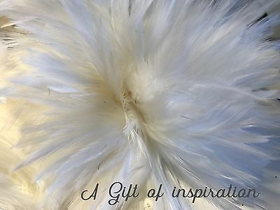 20 White Fluffy rooster feathers 8-12cm DIY Millinery Craft Decoration fly tying