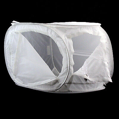 Photek Digital Lighthouse Small Translucent Shooting Tent (Open Box)