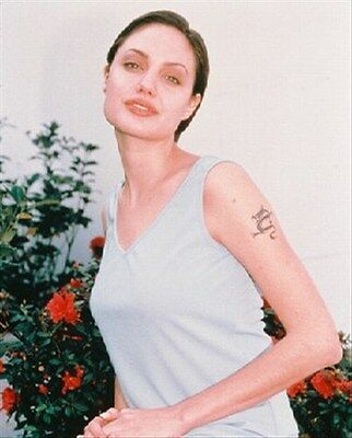ANGELINA JOLIE 8x10 Photo lovely pic 243383