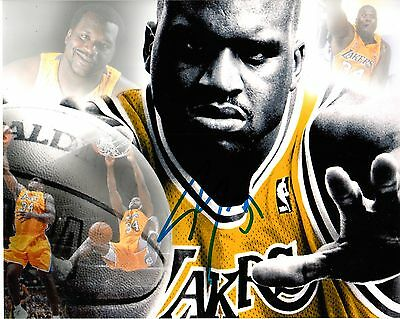 Shaquille O'neal Signed Lakers Photo