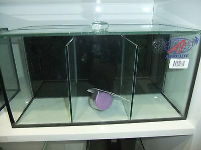 ABSOLUTE 3 Section Fighter betta  Tank with Internal Filter BET3RE