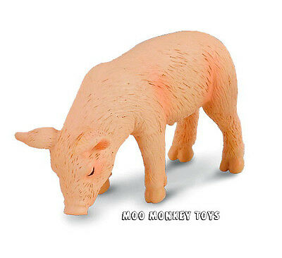 PIGLET EATING CollectA # 88346 Farm Animal Collectible Toy Replica  NWT