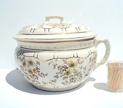 JOHN MOSES & SONS CO  Antique Ironstone Ceramic Chamber Pot  with Original Lid