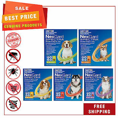 NEXGARD SPECTRA Flea Tick Heartworm Worm treatment for Dogs All Sizes 3 Chews