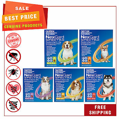 NEXGARD SPECTRA Flea Tick Heartworm Worm treatment for Dogs All Sizes 6 Chews