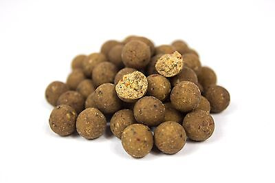 Oily Krill Boilies 15mm 10KG
