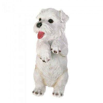 White Terrier Climbing Cutie Named Aspen Collectible Pup Collectible Accent NEW