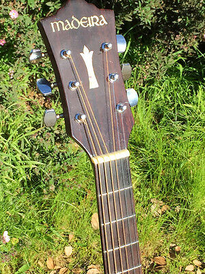 Madeira A25 R Acoustic Guitar by Guild