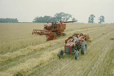 Massey Ferguson MF35 Tractor and Baler & MF Combine- Canvas Picture Print