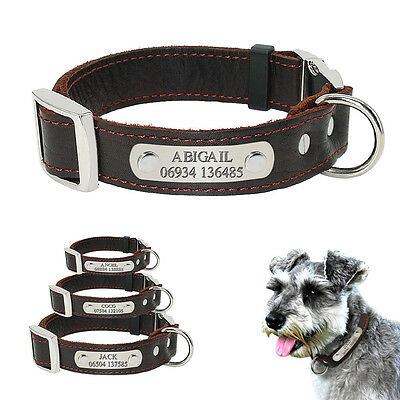 Brown Leather Personalized Dog Collars Pet Name & NO Custom Engraved Gift Bell