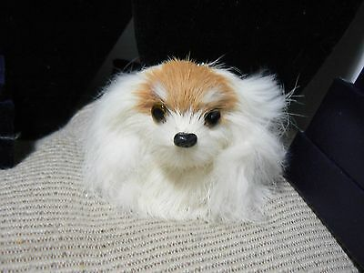 New Never Used Dog Head Key Chain  Papillon Breed  Very Very Cute     C1