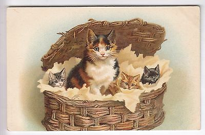 Cpa  Animal Fantaisie -  Chat Minou Cat Katze Le Panier De La Famillle 1910 ~B89
