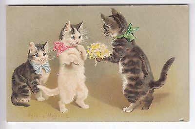 Cpa  Animal Fantaisie -  Chat Minou Cat Katze Bouquet Helena Maguire 1908 ~B89