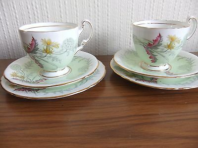 Vintage china Aynsley Wayside c1280- two cup,saucer, plates, excellent cond]