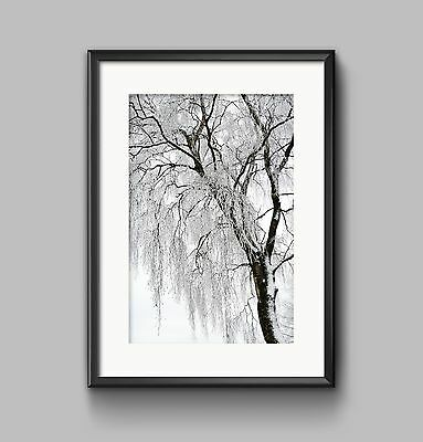 BLACK AND WHITE TREE Print A4 or A3 Wall Art HOME DECOR