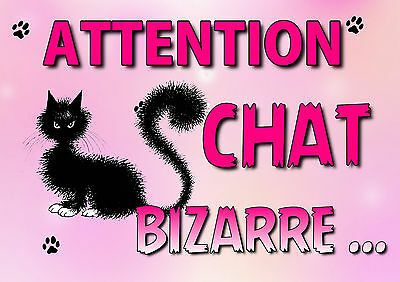 plaque attention chat bizarre en métal alu 29x20cm percée 4 coins réf 05