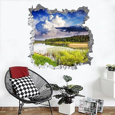 3D Lake Weeds 105 Wall Murals Wall Stickers Decal Breakthrough AJ WALLPAPER AU