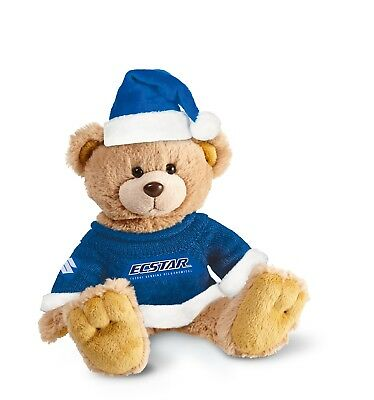Teddy Team Ecstar