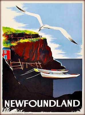 Newfoundland Canada Seagull Canadian Vintage Travel Advertisement Poster Print