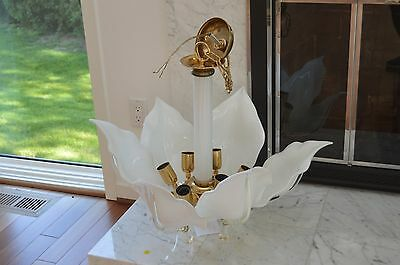 Spectacular Murano Glass White Glass & Gold Trim Chandelier