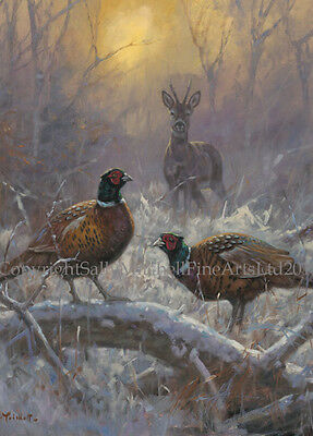 Pheasant and Deer Christmas Cards pack of 10 by John Trickett. C508X