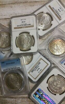 Estate Coin Lot U.S. Silver Morgan Dollar - 1 PCGS or NGC Certified MS63  TONED