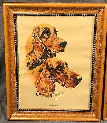 """Vintage Irish Setters Dog M. Gear Framed Art Wall Hope Co. Hanging Picture 10x8"""""""