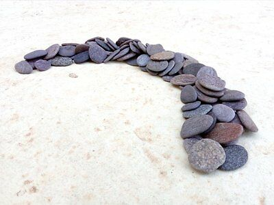 Flat Smooth Pebbles (100) Thin Craft Stones 10 - 20 mm