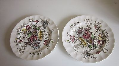 """Johnson Brothers Sheraton dinner Plates set of two made in England 10"""""""