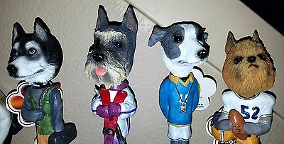 Doogies DOG BREED HEADS The American Collection