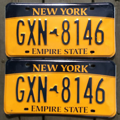 🌟⚜🌟🎼⚜🎶⚜🎶  AUTHENTIC USA 2010's NEW YORK PIAT OF LICENSE PLATES.
