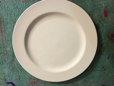 Bisque fired dinner plates
