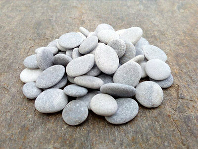 60 Very Small Craft Stones - Tiny Flat Pebbles Easy To Drill 5 - 10 mm