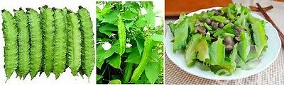 15 seeds Thailand winged bean