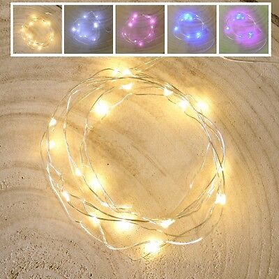 Light String Wire Seed Light 1m with 10 x seeds Table Centrepiece Lighting