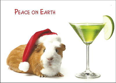 Guinea Pig Christmas Cards  *  Box of 12 cards