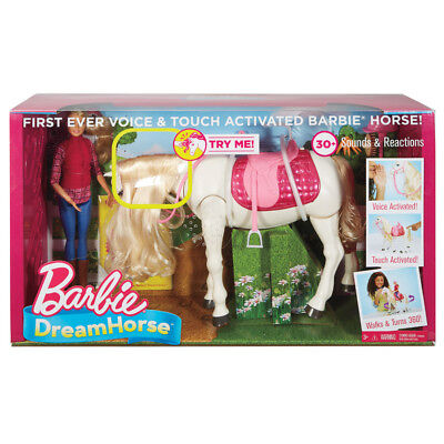 Barbie DreamHorse With Doll - NEW