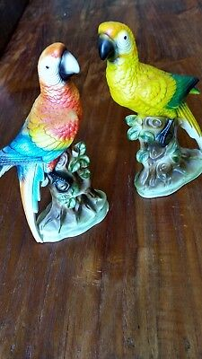 "Vintage pair of Beautiful Parrots made in ""JAPAN"""