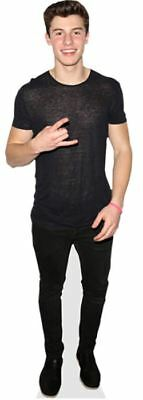 Shawn Mendes (Rockin) Cardboard Cutout (lifesize OR mini size) Standee Stand Up
