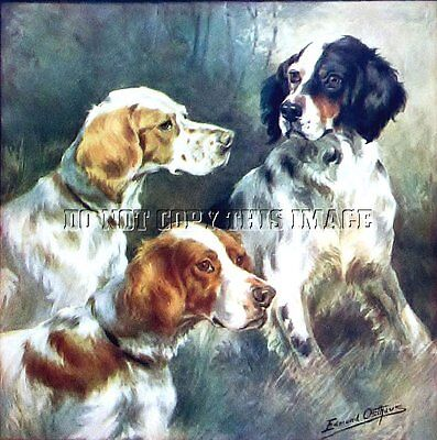 Antique Hunting 8X10 Osthaus Photograh Print 3 English Setters #2