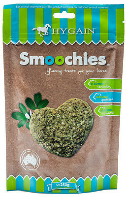 HYGAIN Smoochies - Healthy and Yummy Horse Treats 250g