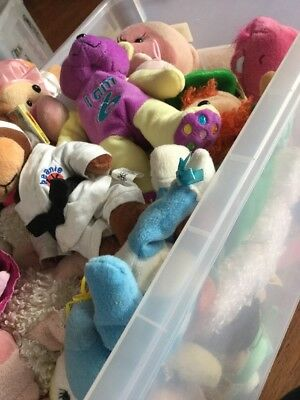 A Big Box Of Beanie Kids