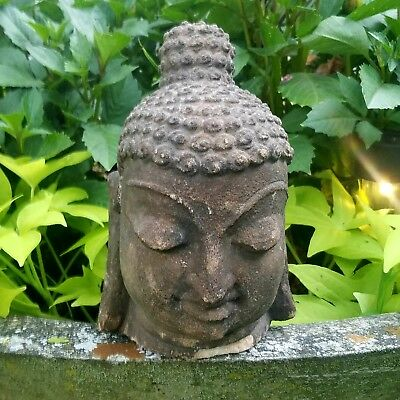 ULTRA RARE & IMPORTANT Ancient Stucco Buddha Head Fragment EX-Private Collection