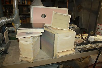 Honeybee Queen Rearing Equipment these are boxes for queen mating.